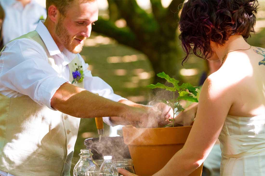 Huwelijksboompje planten als bruidspaar